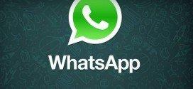Whatsapp libera atualização: dá para silenciar pessoas e marcar como 'não lido'