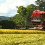 maquina agronegocio