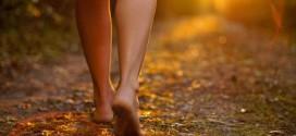 A caminhada da vida