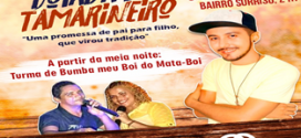 Dia 24 de junho acontece a tradicional Boiada do Tamarineiro em Pindaré Mirim