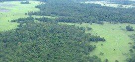 Ministério confirma revogação do decreto que extinguia a Reserva Nacional do Cobre e Associados