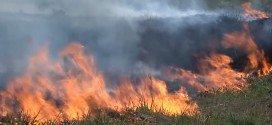 Maranhão registra mais de mil focos de incêndio em cinco meses, aponta INPE